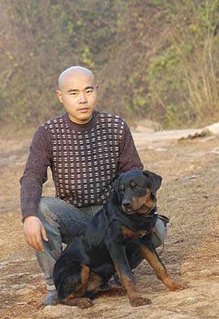 """南宁宠物犬训练—宠物狗""""单血统""""和""""双血统""""是什么意思?"""